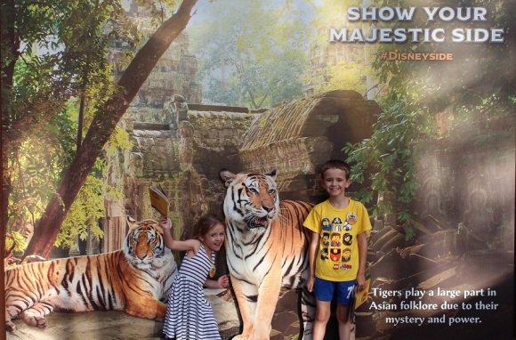 ANIMAL_KINGDOM_KIDS_TIGERS